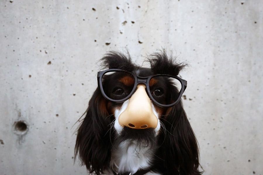 メガネ修理の専門店